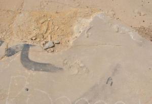Κρήτη: Οι απίθανες εξηγήσεις του εκπαιδευτικού για τις προϊστορικές πατημασιές ανθρώπου που βρέθηκαν σπίτι του!