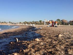Κάνει μηνύσεις ο δήμος Γλυφάδας για την πετρελαιοκηλίδα
