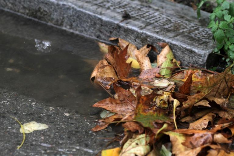 """Φθινοπωρινή Ισημερία: Την Παρασκευή """"έρχεται"""" το… φθινόπωρο"""