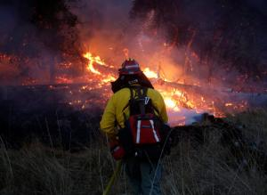 Καλιφόρνια: Κόλαση! 38 οι νεκροί από τις φωτιές