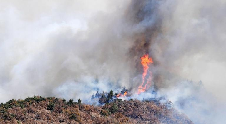 Στο έλεος των πυρκαγιών η Ιταλία – Εκκενώθηκε γηροκομείο – Βοήθεια από την Ελλάδα