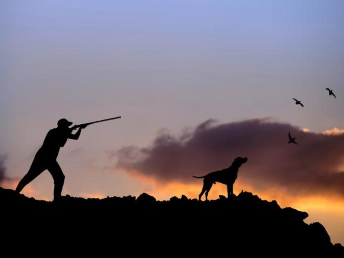 Νέα μέτρα για τον κορονοϊό: Τι αλλάζει σε καταστήματα, κυνήγι και ψάρεμα
