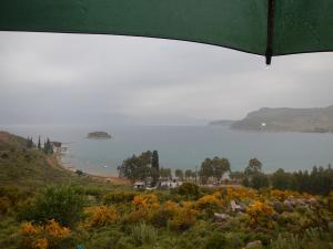 Καιρός: Βροχές και… βοριάδες – Αναλυτική πρόγνωση