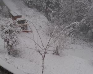 Κορινθία: Κλειστός ο επαρχιακός δρόμος στο διάσελο της Καστανιάς λόγω χιονόπτωσης [pic, vid]