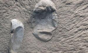 Ανακαλύφθηκαν 215 απολιθωμένα αυγά πτερόσαυρων 120 εκατομμυρίων ετών