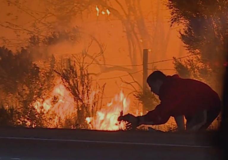 Άγνωστος ήρωας! Σταμάτησε να σώσει κουνέλι από τη φωτιά στην Καλιφόρνια [vid]