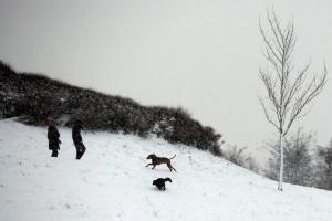 Γερμανία: Αναστάτωση λόγω χιονιά! Εκατοντάδες ακυρώσεις και καθυστερήσεις σε πτήσεις