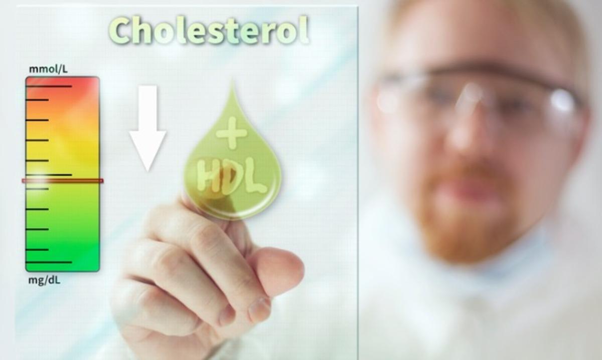 Τι να τρώτε για ν' αυξήσετε την καλή χοληστερόλη (HDL) – 9 απλοί κανόνες | Newsit.gr