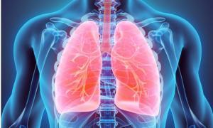 Κάπνισμα: 6 τροφές που βοηθούν να καθαρίσετε τους πνεύμονες από τη νικοτίνη