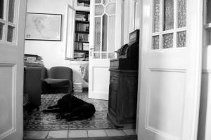Πάτρα: Κοίταξε μέσα στο σπίτι της και έπαθε πλάκα – Η εικόνα που είδε από το πεζοδρόμιο!