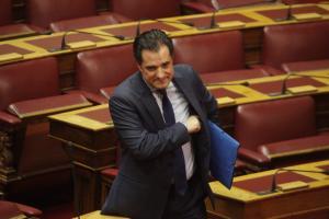 """Σκοπιανό: Παρών στο συλλαλητήριο της Αθήνας ο Άδωνις Γεωργιάδης – """"Το ουσιώδες είναι η αλλαγή του Συντάγματος της ΠΓΔΜ"""""""
