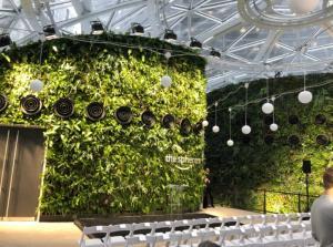 Ένα τροπικό δάσος μέσα σε τρεις σφαίρες… τα νέα γραφεία της Amazon! [pics]