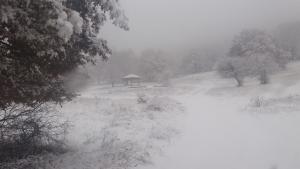 Μακεδονία: Χιονίζει σε Κοζάνη, Καστοριά, Φλώρινα και Γρεβενά – Μαγικά τοπία στα λευκά [pic, vids]