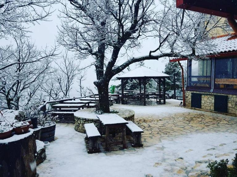 Καιρός: Στην «κατάψυξη» η χώρα! Κακοκαιρία και τσουχτερό κρύο –  Χιονίζει στην Πάρνηθα | Newsit.gr