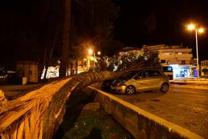 Ναύπλιο: Εικόνες καταστροφής από τους θυελλώδεις ανέμους [pics, vid]
