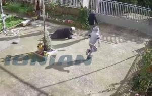 Σπάρτη: «Λήστεψαν τη γιαγιά που της είχαν πει τα κάλαντα» – Οι άγνωστες αλήθειες του χτυπήματος στην κάμερα [vids]