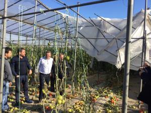Σε κατάσταση έκτακτης ανάγκης κήρυξε η Περιφέρεια Κρήτης τις περιοχές που χτυπήθηκαν από τη σφοδρή ανεμοθυελλα