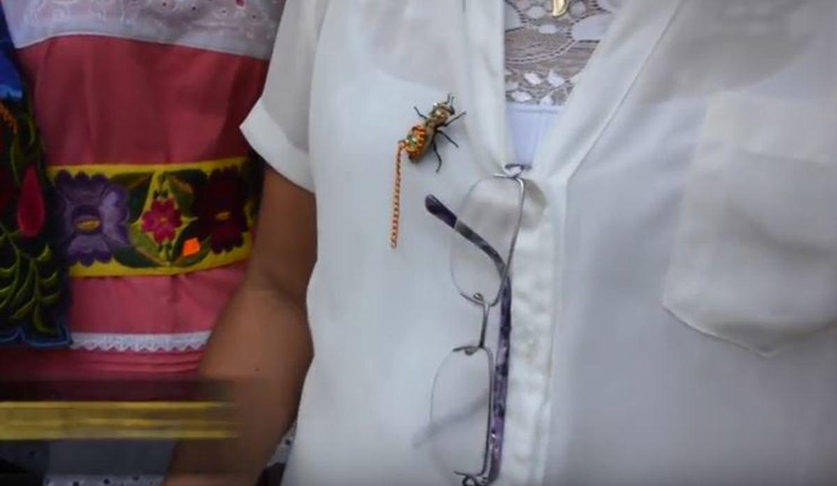 Στο Μεξικό φορούν για αξεσουάρ ζωντανά σκαθάρια | Newsit.gr