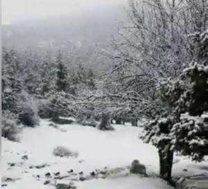 Καιρός: Το πρώτο χιόνι της χρονιάς στην Πάρνηθα! – Που χιονίζει σήμερα