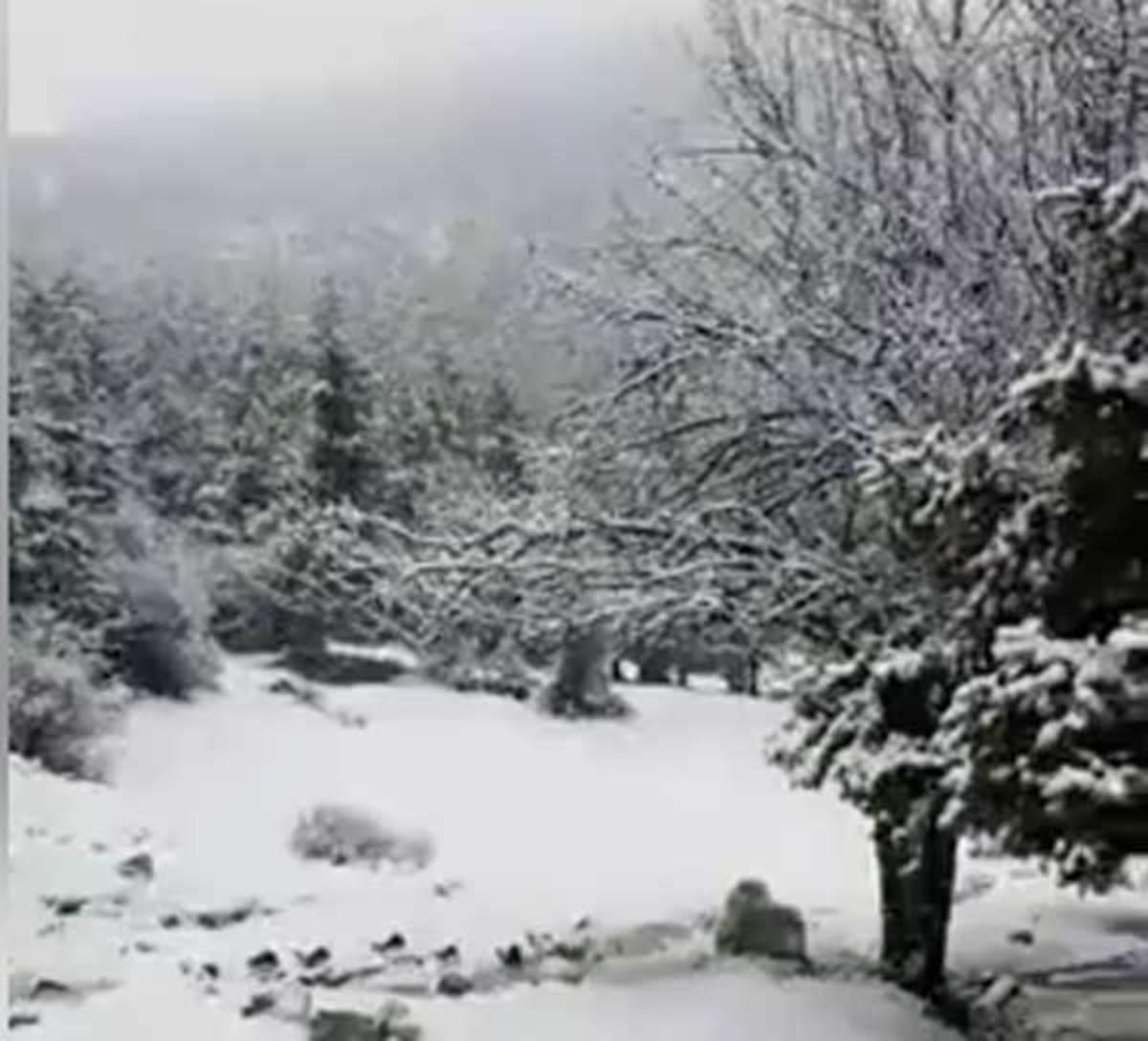 Καιρός: Το πρώτο χιόνι της χρονιάς στην Πάρνηθα! – Που χιονίζει σήμερα | Newsit.gr