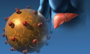 Ηπατίτιδα C: Δείτε τι κάνει στο ήπαρ – Συμπτώματα και ποιοι κινδυνεύουν [vid]
