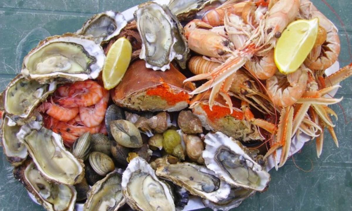 Καθαρά Δευτέρα: Πώς να ξεχωρίσετε τα φρέσκα θαλασσινά – Τι κάνουμε σε περίπωση δηλητηρίασης | Newsit.gr