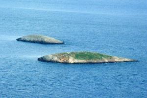 Κάλυμνος: Ο βοσκός των Ιμίων λύνει τη σιωπή του – Το ξέσπασμα του Αντώνη Βεζυρόπουλου!