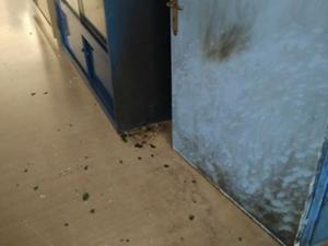 Αγρίνιο: Μολότοφ σε σχολείο – Οι εικόνες που δείχνουν ότι τα πράγματα ξεφεύγουν [pics]