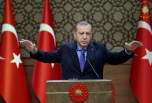 """Ερντογάν: """"Fake news"""" των ΗΠΑ για την επιχείρηση στην Αφρίν"""