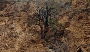 Τραγικό τέλος: Νεκρός ο άνδρας που έπεσε σε γκρεμό στην Αράχωβα