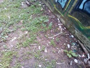 Αγρίνιο: Ανατριχιαστικές εικόνες με σύριγγες στο προαύλιο σχολείου! [pics]