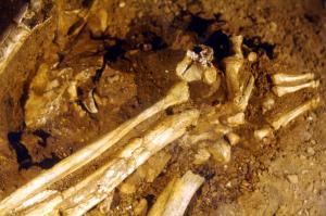 Κίνα: Έκαναν εξαγωγές δοντιών πριν 4.500 χρόνια!