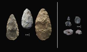 Ο καινοτόμος Homo sapiens – Νέες ανακαλύψεις