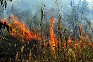 Κόλαση φωτιάς παντού! Πύρινα μέτωπα από την Κρήτη έως τον Αυλώνα