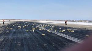 Απίστευτο! Τρεισήμισι τόνοι χρυσού έπεσαν από αεροπλάνο στην Ρωσία! [vid]