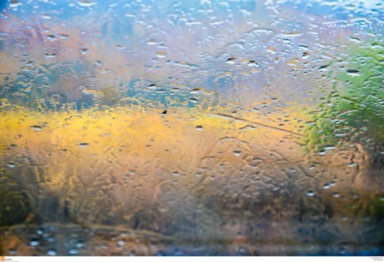 Καιρός: Αλλού Άνοιξη, αλλού βροχές και καταιγίδες | Newsit.gr