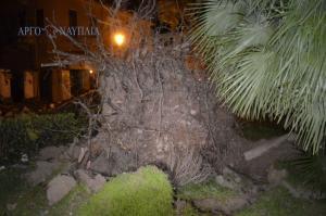 Ανεμοδαρμένο… Ναύπλιο: Την «πλήρωσαν» δέντρα, τζαμαρίες και τραπεζοκαθίσματα [pics, vid]
