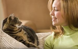 Εξυπνότεροι όσοι αγαπούν τις γάτες περισσότερο από τους σκύλους