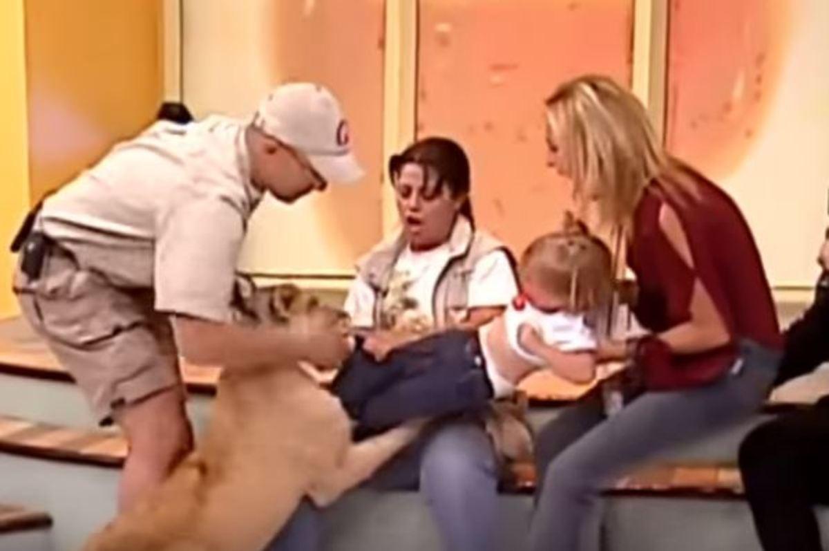 Πανικός σε ζωντανή εκπομπή! Λιοντάρι πήγε να καταβροχθίσει νεαρό κορίτσι | Newsit.gr