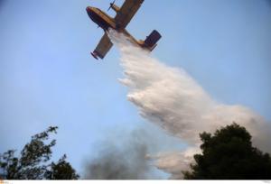 Φωτιά στην Ηλεία: Σε εξέλιξη η μάχη της κατάσβεσης – Αιχμές για τα αίτια της καταστροφής [pics, vids]