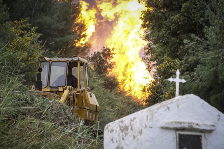 Φωτιά στην Ηλεία: Οι νέες εικόνες που κόβουν την ανάσα – Οι πρώτες ενδείξεις για τα αίτια της πυρκαγιάς [pics, vids]   Newsit.gr