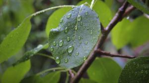 Καιρός: Έρχονται νέες βροχές, δεν φεύγει ακόμη η σκόνη