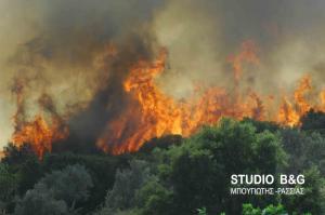 Πυρκαγιά κοντά σε οικισμό της Αργολίδας