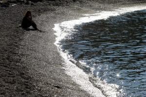 Κολυμπήστε ελεύθερα! Άρση απαγόρευσης στις παραλίες που είχε «μαυρίσει» η πετρελαιοκηλίδα!