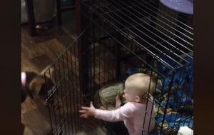 """Μωρό """"απέδρασε"""" από το δωμάτιο του για να κλειστεί στο κλουβί του σκύλου"""