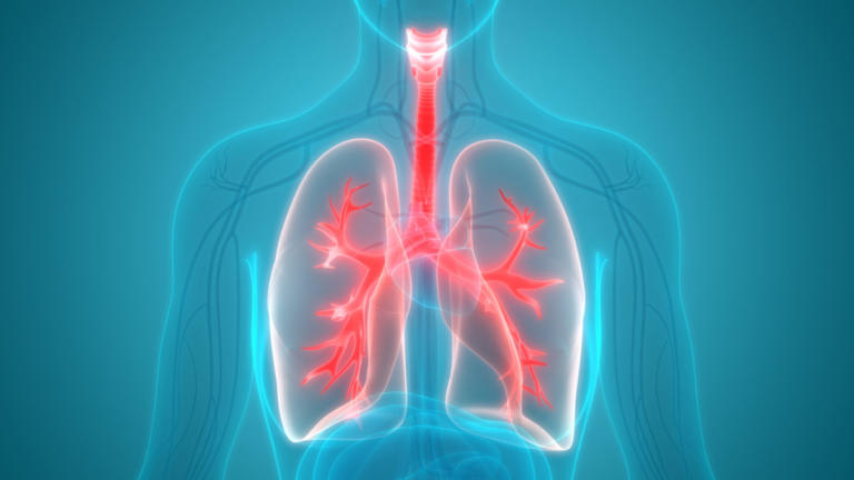 Πέθανε από καρκίνο γιατί της μεταμόσχευσαν τους πνεύμονες καπνίστριας!   Newsit.gr