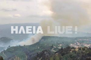 Ηλεία: Ισχυρές πυροσβεστικές δυνάμεις επιχειρούν ακόμα στη Φρίξα