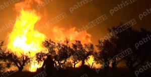 Ηλεία: Έπιασαν 46χρονο για τη μεγάλη φωτιά στη Φρίξα!