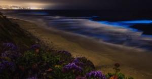 Απόκοσμη και εντυπωσιακή! Η «απίστευτη» βιοφωταύγεια που δίνει στην Καλιφόρνια μια μπλε λάμψη