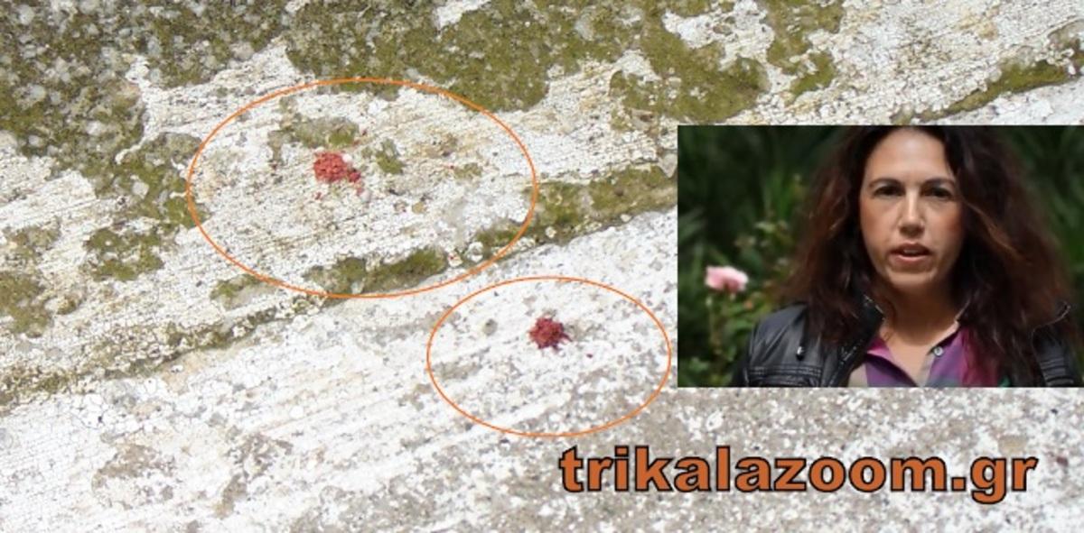 Τρίκαλα: Αυτό είναι το θύμα της οικογενειακής τραγωδίας! Την έσφαξε μπροστά στα μάτια της κόρης τους.